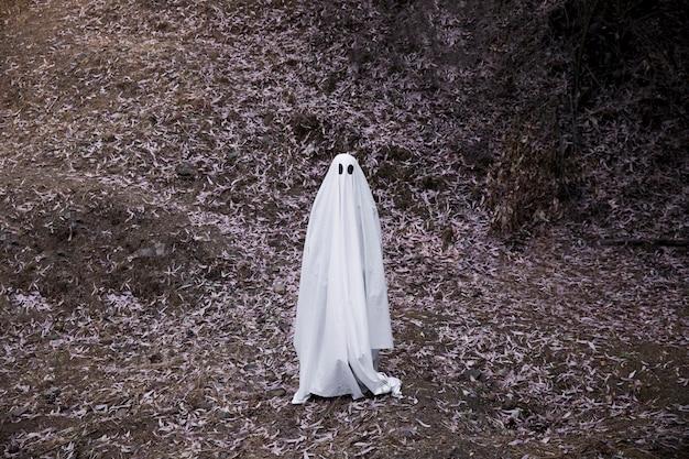Fantôme sombre debout sur un sol en forêt Photo gratuit