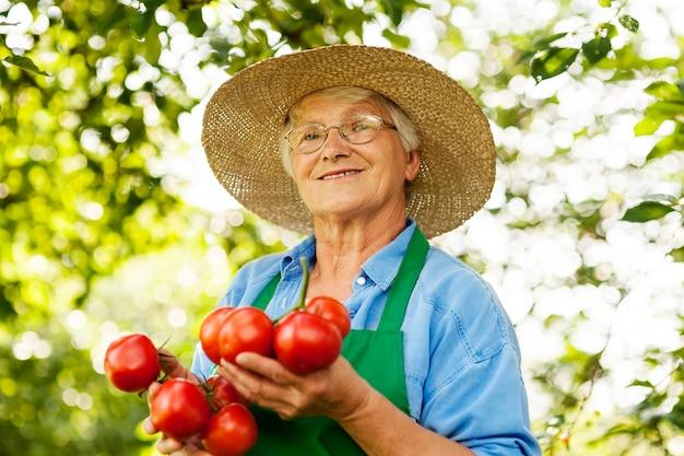 Femme Aînée, à, Tomates Photo gratuit