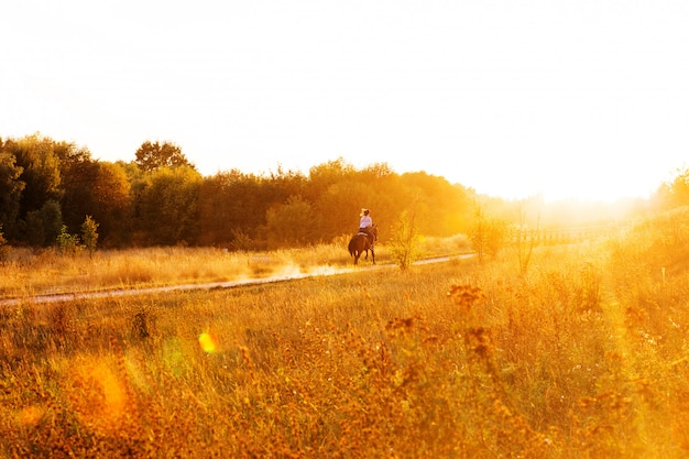 Femme, Cheval, Parc, Coucher Soleil équitation Photo Premium
