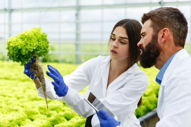 Femme et homme en robes de laboratoire examinent attentivement les plantes dans la serre Photo gratuit