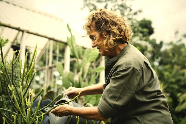 Femme, jardinage, serre Photo Premium