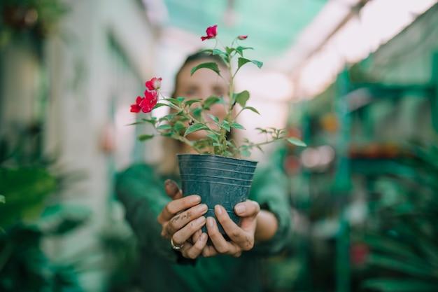 Femme jardinier montrant le pot de fleurs en pépinière sur fond flou Photo gratuit