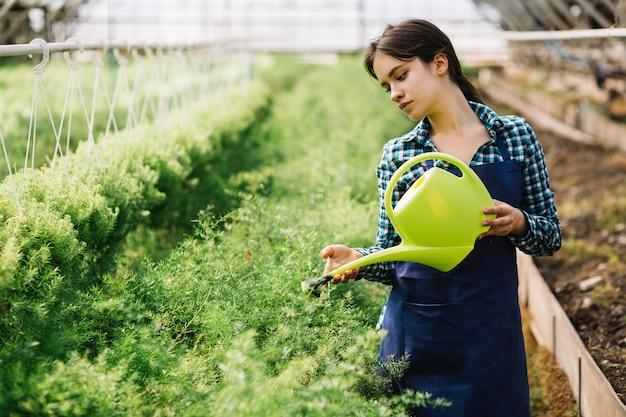 Femme jardinier travaillant dans la serre Photo gratuit