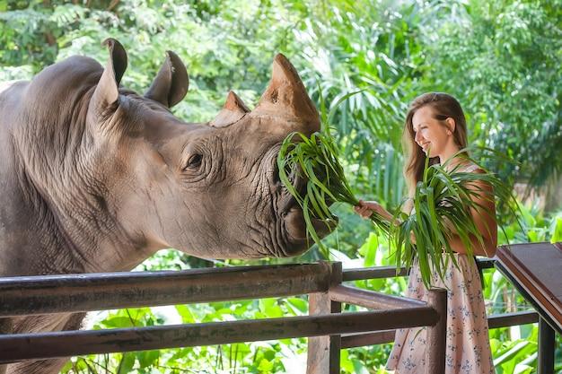 Femme Nourrissant Le Rhinocéros Au Zoo Photo Premium
