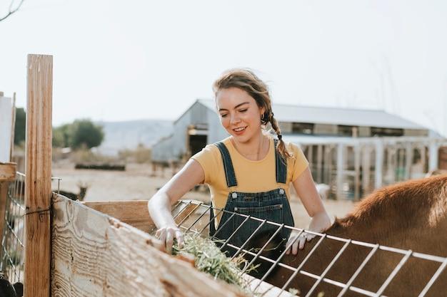 Femme prenant soin des animaux, le sanctuaire de soledad Photo gratuit