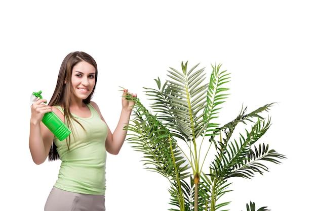 Femme prenant soin de plante isolée on white Photo Premium