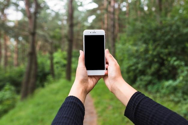 Une femme prend des photos à travers un téléphone portable dans la forêt Photo gratuit