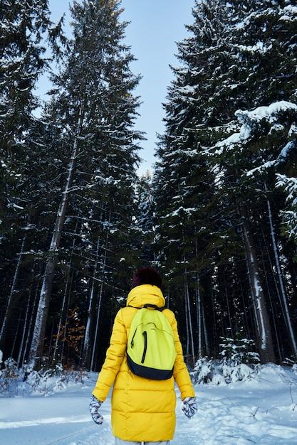 Femme Sombre Forêt, Promenade Dans Les Bois Avant Noël Photo Premium