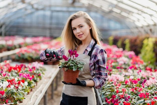 Femme, Tablier, Tenue, Pot Fleur Photo gratuit
