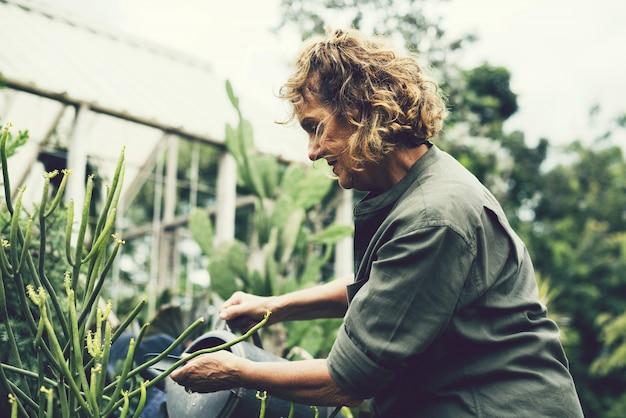 Femme tendant aux plantes dans une serre Photo Premium