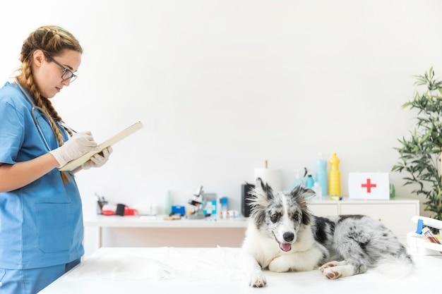 Femme vétérinaire écrit dans le presse-papiers avec chien assis sur une table en clinique Photo gratuit