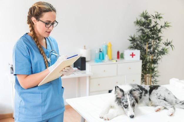 Femme vétérinaire écrit sur le presse-papiers avec chien sur la table dans la clinique Photo gratuit