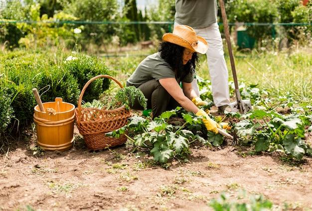 Femme vue de face en prenant soin de la récolte Photo gratuit