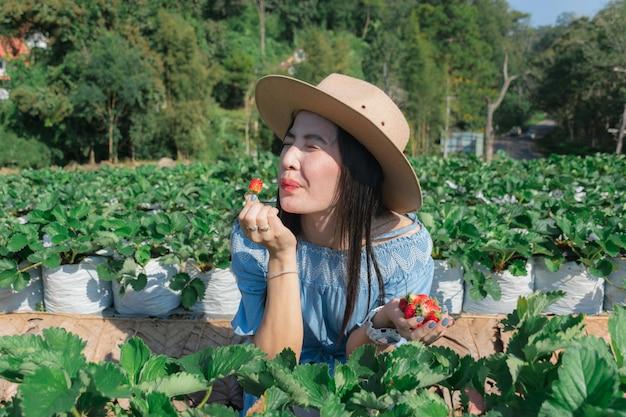 Les femmes mangent des fraises chez l'agriculteur. Photo Premium