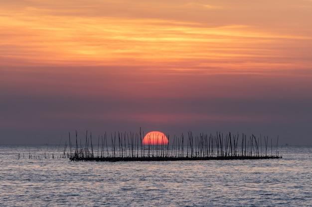 Ferme aux huîtres dans la mer et beau ciel coucher de soleil fond Photo gratuit