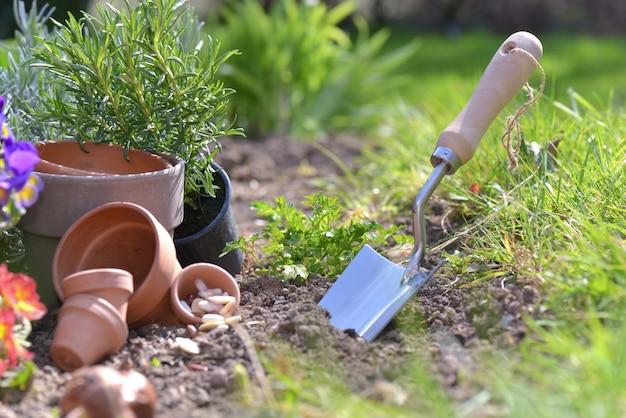 Fermer sur la plantation de showel dans le sol d'un jardin Photo Premium