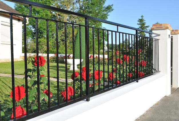Fermeture De Roses Fleuries Derrière Une Clôture Bordée D'un Jardin Photo Premium