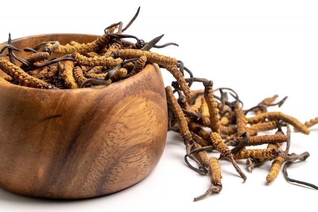 Fermez cordycep sinensis (chong cao) ou cordyceps aux champignons sur un bol en bois Photo Premium