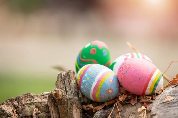 Fête Des œufs De Pâques. Photo gratuit