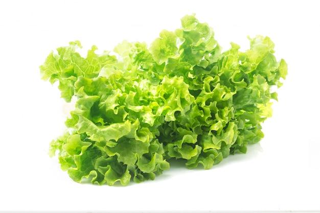 Feuille De Salade. Laitue Isolée Sur Fond Blanc. Photo gratuit