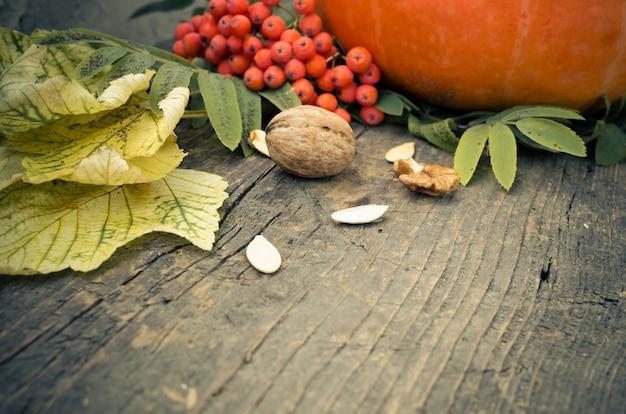 Feuilles d'automne et citrouille Photo Premium