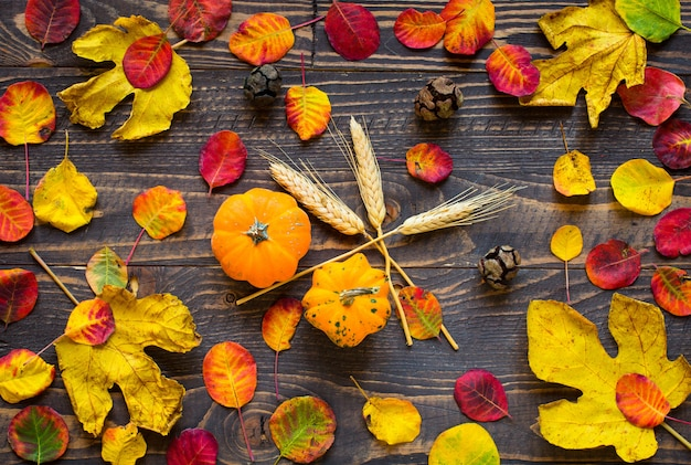Feuilles d'automne coloré sur un fond en bois Photo Premium