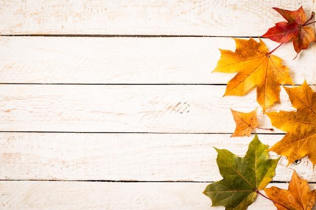 Feuilles d'automne coloré sur fond rustique blanc. Photo Premium