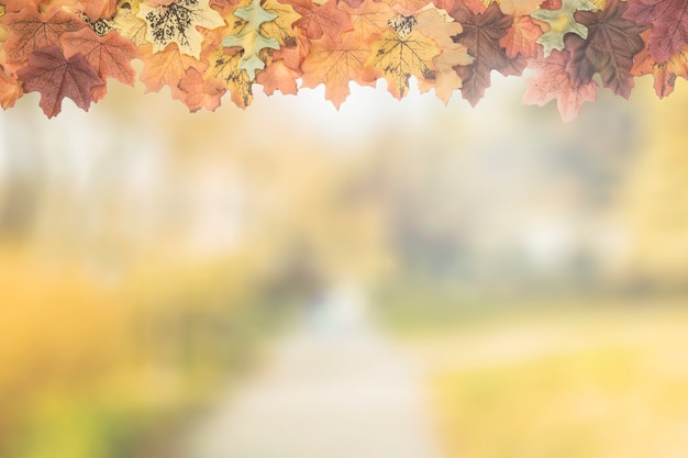 Feuilles d'automne comme cadre supérieur Photo gratuit