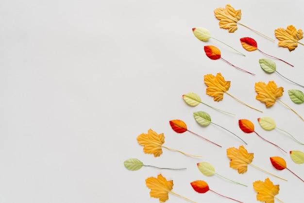 Feuilles d'automne sur fond blanc Photo gratuit