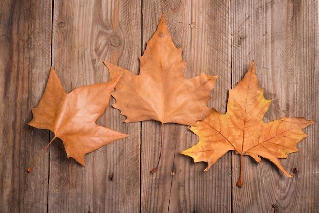 Feuilles d'automne sur un fond en bois Photo Premium