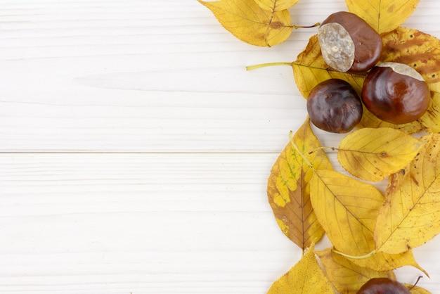 Feuilles d'automne jaunes et châtaigne sur fond de bois blanc avec fond Photo Premium