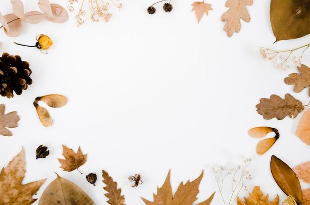Feuilles d'automne à plat avec espace de copie Photo gratuit