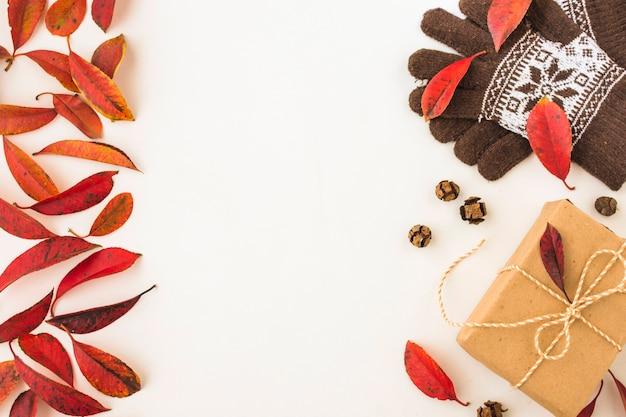 Feuilles d'automne près des gants et du présent Photo gratuit