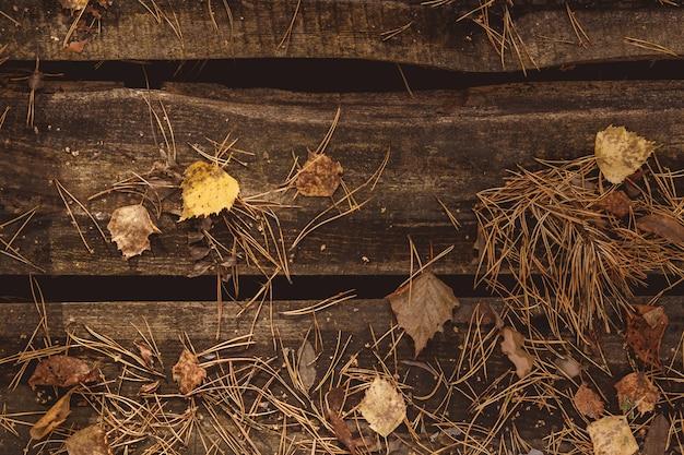 Feuilles d'automne et sapin sur fond en bois. avec espace de copie Photo Premium