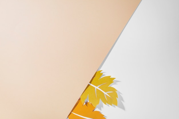 Feuilles colorées sur fond blanc Photo gratuit
