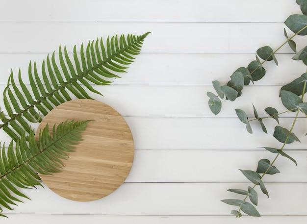 Feuilles De Fougère Et Assiette En Bois Circulaire Sur Des Panneaux En Bois Blanc. Photo gratuit