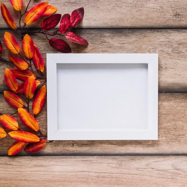 Feuilles multicolores avec cadre blanc Photo gratuit