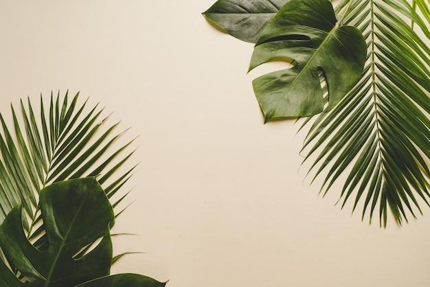 Feuilles de palmier tropical sur fond beige Photo Premium