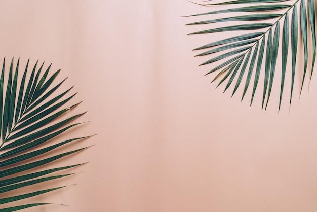 Feuilles de palmier tropical sur fond de couleur avec fond Photo Premium
