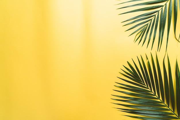 Feuilles de palmier tropical sur fond jaune avec fond Photo Premium