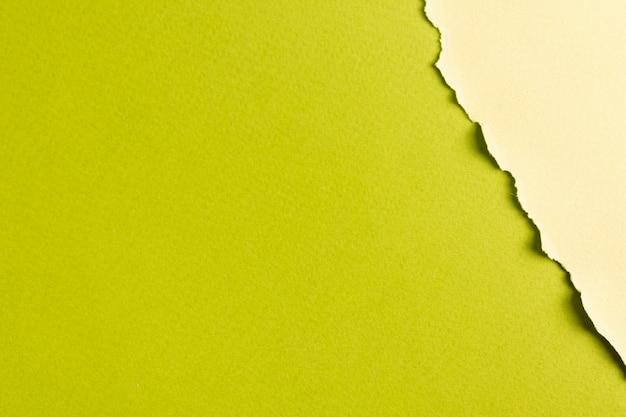 Feuilles de papier aux tons verts avec espace de copie Photo gratuit