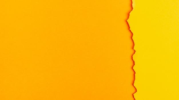 Feuilles de papier toniques jaunes avec espace de copie Photo gratuit