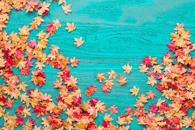 Feuilles rouges et jaunes sur fond coloré Photo gratuit