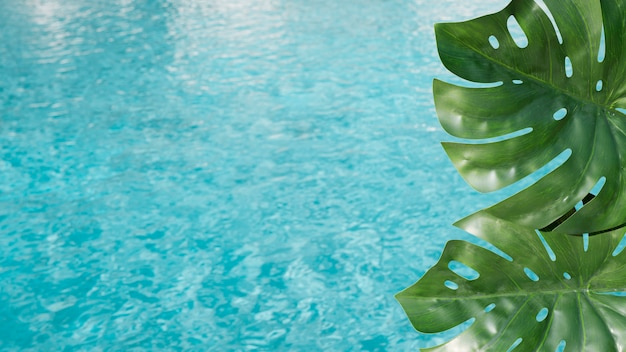 Feuilles tropicales avec fond de piscine Photo gratuit