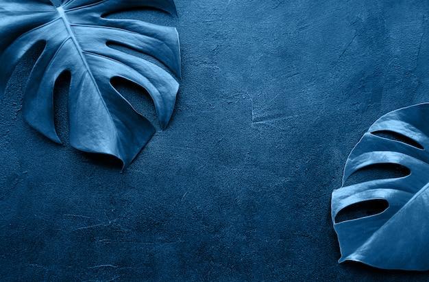Feuilles Tropicales Monstera Tonique Couleur Bleu Classique Photo Premium