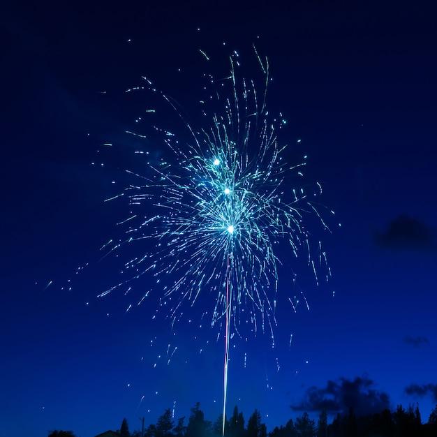 Feux D'artifice Colorés Bleus Sur Fond De Ciel Nocturne Photo Premium
