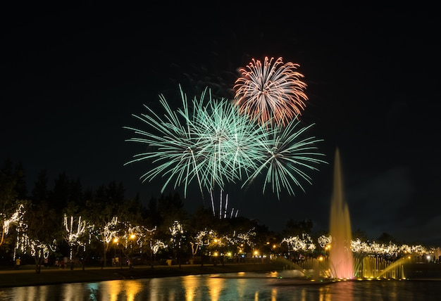 Feux D'artifice Dans Le Parc De La Ville Photo Premium