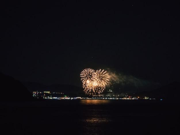 Feux d'artifice la nuit Photo Premium