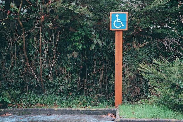 Feux de circulation en fauteuil roulant Photo Premium