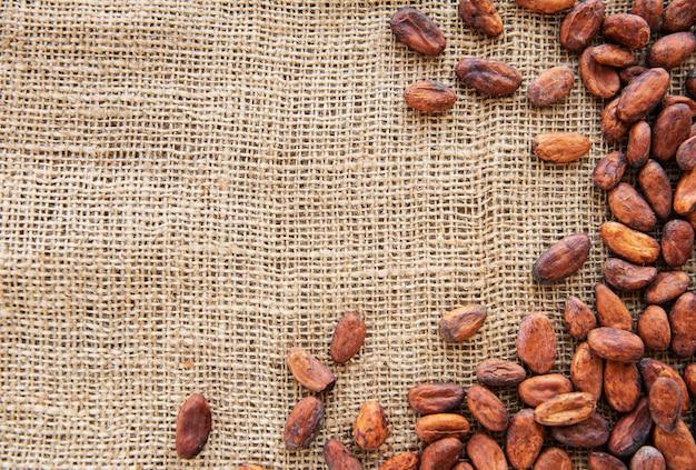 Fèves De Cacao Crues Photo Premium